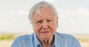 Sir David Attenborough's warnings over the extinction crisis